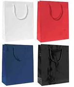 Rope Handle Paper Gift Bags_order guide.jpg